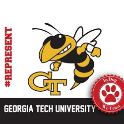 Georgia Tech Collars, Leads & Harnesses