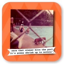Wiener Pool Color Coaster