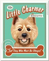 Little Charmer-(Cairn Terrier )