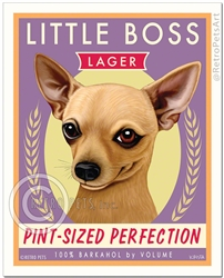 Little Boss-(Chihuahua )