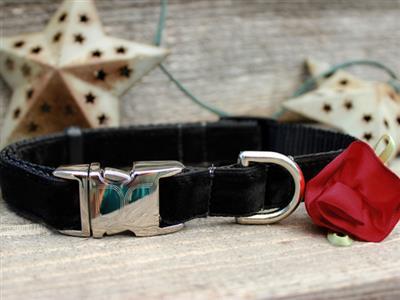 Carnation Red Velvet Collar Silver Metal Buckles