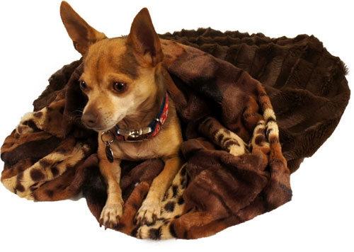 Exotic With Chocolate Mink Cuddle Pouch -