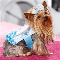 Mary Puppins - Corset Harness