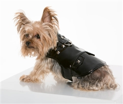 Patent Leather and Studded Vest Harness