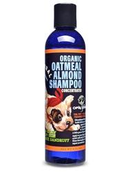 Organic Oatmeal Almond Shampoo - 8oz