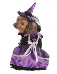 Rubie's Purple Witch