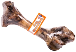 Mammoth Bone - USA