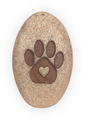 Live in the Meow Pawsitive Inspiration Pillow Packed Stone