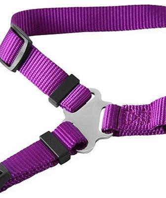 GoGo® Harnesses