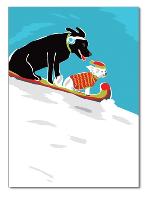 Holiday Card: Dog and Cat Sliding Down