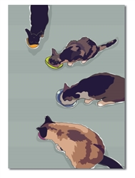 Thank You: Four cats eating