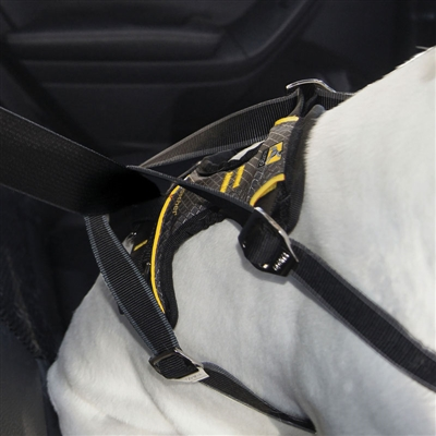 Impact Harness - Dog Seatbelt