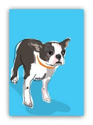 Boston Terrier - Fridge Magnet