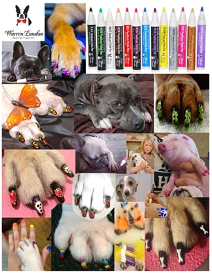 Nail Art Photo - Groomers or Retail Stores