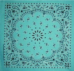 Grooming Salon Bandanas 12 Pack - Light Blue Paisley