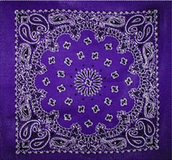 Grooming Salon Bandanas 12 Pack - Purple Paisley