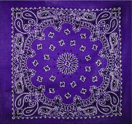 Grooming Salon Bandanas 12 Pack - Purple Paisley