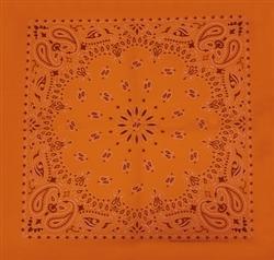 Grooming Salon Bandanas 12 Pack - Orange Paisley