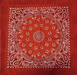Grooming Salon Bandanas 12 Pack - Red Paisley