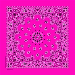 Grooming Salon Bandanas 12 Pack - Hot Pink Paisley