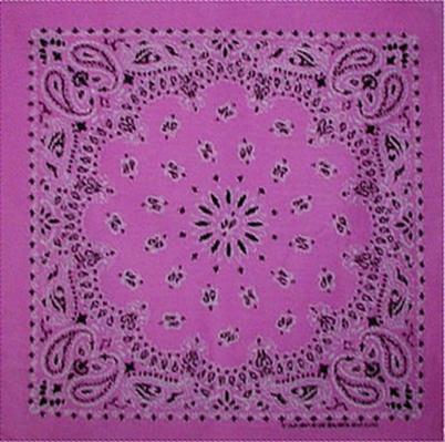Grooming Salon Bandanas 12 Pack - Light Pink Paisley
