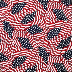 Grooming Salon Bandanas 12 Pack - Tossed American Flag