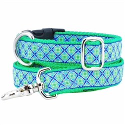 Lucky Clover Essential Collars and Leads