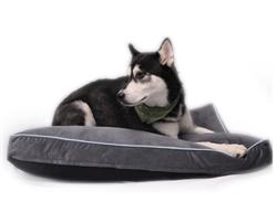 Otis & Claude® Sleepy Paws™ Linus Rectangle Dog Bed