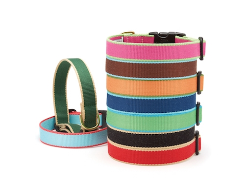 Bright Pink and Lime - Green Market Collection Collars & Leads
