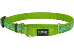 Lime Green with Blue Stars - Martingale Collar