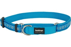 Daisy Chain Turquoise Martingale