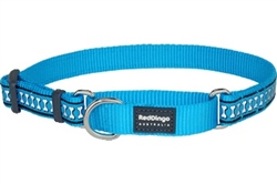 Turquoise Reflective Bone - Martingale Collar