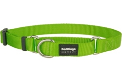 Lime Green Classic Martingale