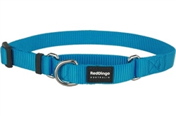 Turquoise Classic Martingale Collar