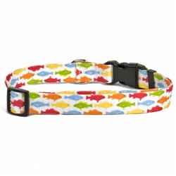 Rainbow Fish White iDesign Collection Collar