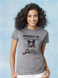 """""""Property Of"""" Collie - 2-Pack of T-Shirts"""