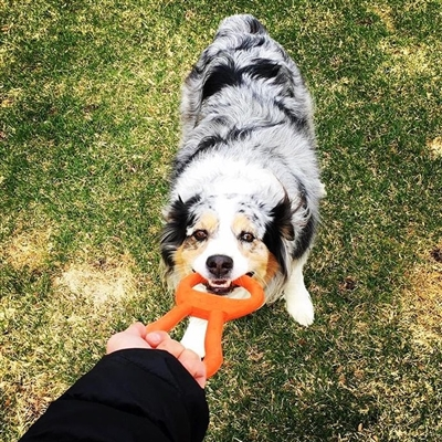 SodaPup Can Opener Tug Toy - Orange Squeeze