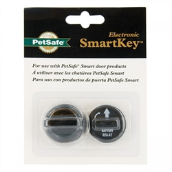 Electronic SmartKey for SmartDoor