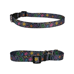 Paisley Skulls Multi Collection