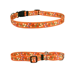 Festive Butterfly Orange Collection