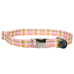 Madras Pink Southern Dawg Collection