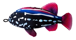 "18"" Grouper Scoochzilla Tough Dog Toys"