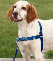 Bling Easy Walk® Harness