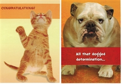 Pet Themed Congratulations Greeting Cards