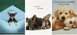 Pet Themed Friendship Greeting Cards