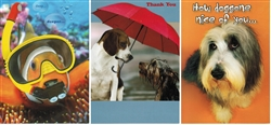 Pet Themed Thank You Greeting Cards