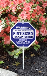 """Silly Security Sign - Pint-Sized Tea Cup Terrier 8"""" x 8"""""""