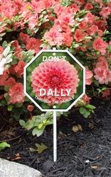 """Don't Dally Through the Dahlias Garden Sign 8"""" x 8"""""""