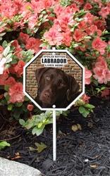 "Spoiled Rotten Labrador Lives Here Garden Sign 8"" x 8"""