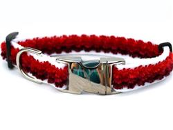 Cabo Sunset Red Collar Silver Metal Buckles